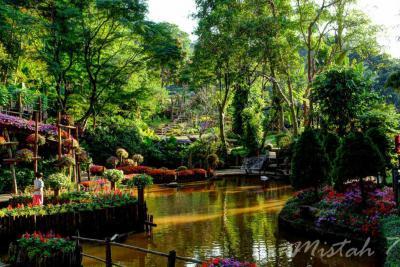 Doi Tung Mae Fa Luang Garden Chiang Rai